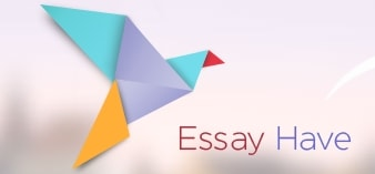 best essay writing service reviews of  essayhave org essayhave org best essay writing service review